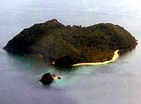 Coralisland_203x150