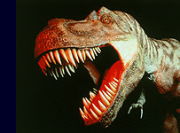 Dinosaur_203x150