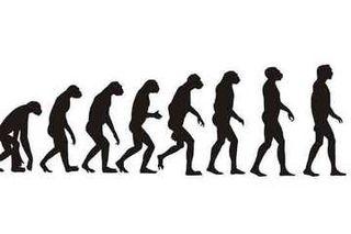 070831_human_evolution_02