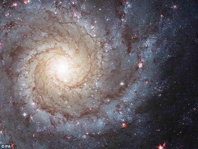 Nicegalaxy