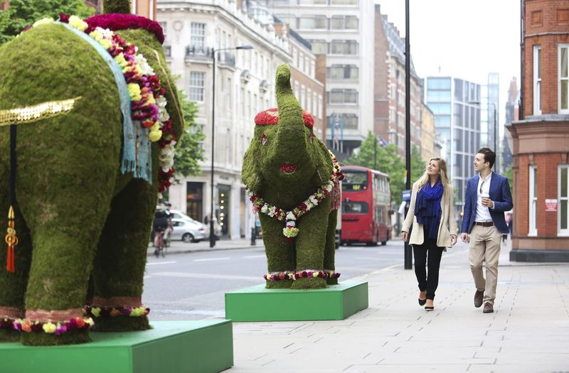 Shoppers on Sloane Street taking stock of the street's temporary new residents5