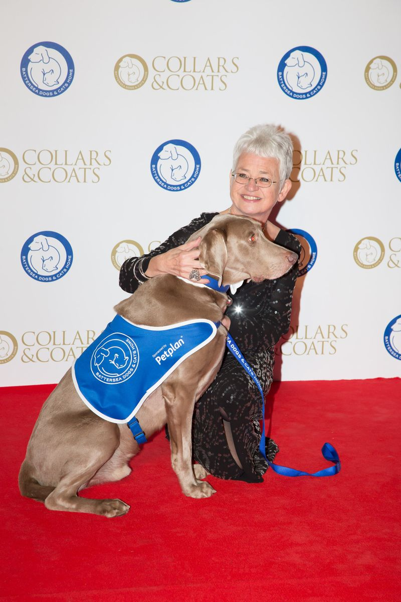 Dame Jacqueline Wilson and Jake the Weimeraner_2013