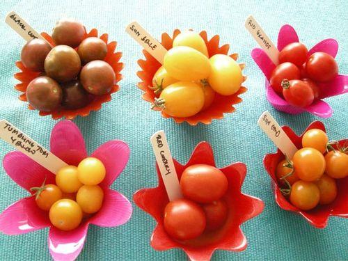 Tomato-taste-trials