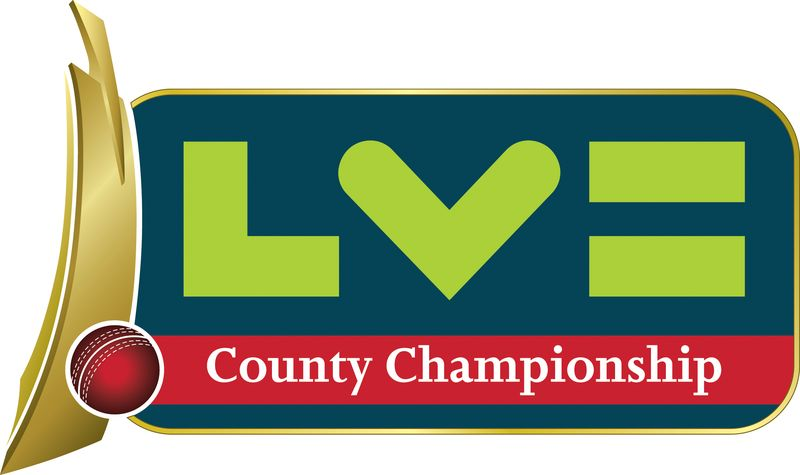 2011 Cricket logo
