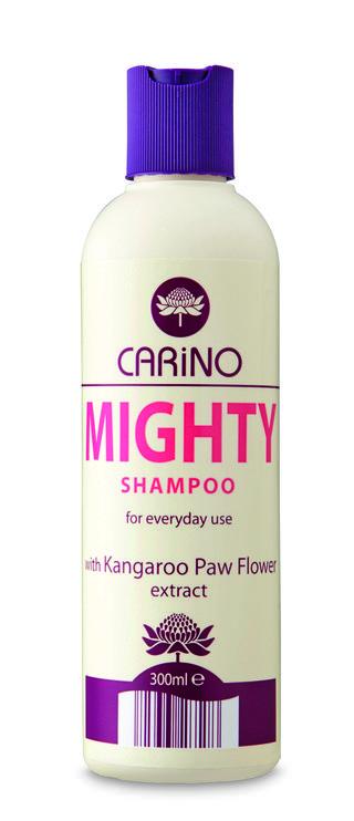 MIGHTY SHAMPOO-2