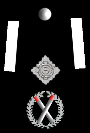 English: UK Police Deputy Chief Constable rank...