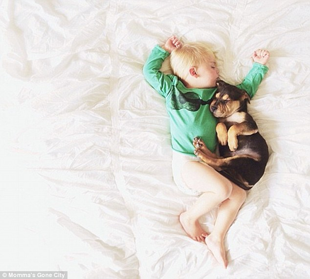 Canine cuddles: 'I was practically howling at the cuteness and nearly woke them both up' Mrs Shyba said of Theo and Beau's first nap together