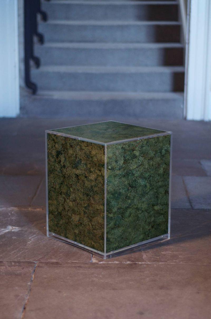 Anth cube