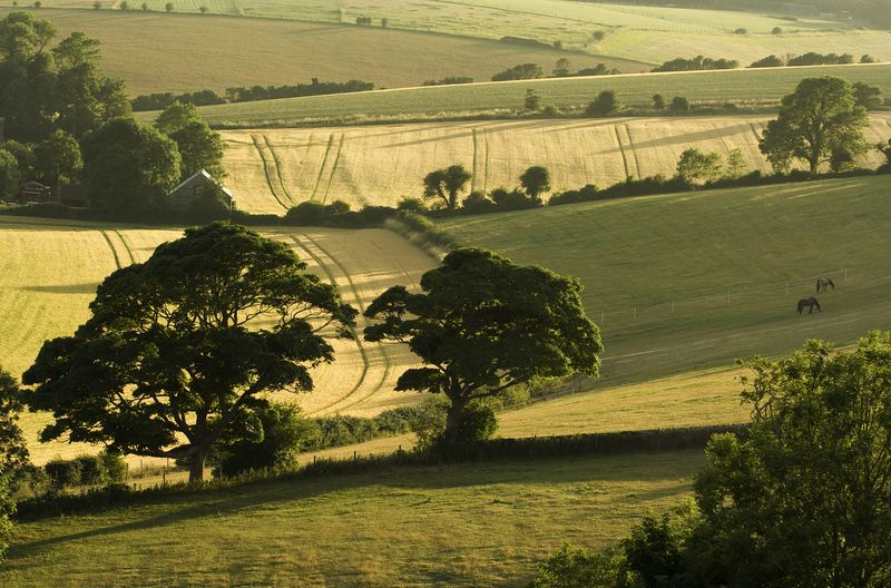South Downs – Housedean Farm – Please credit South Downs National Park