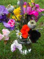 Flower arrangement in jam jar
