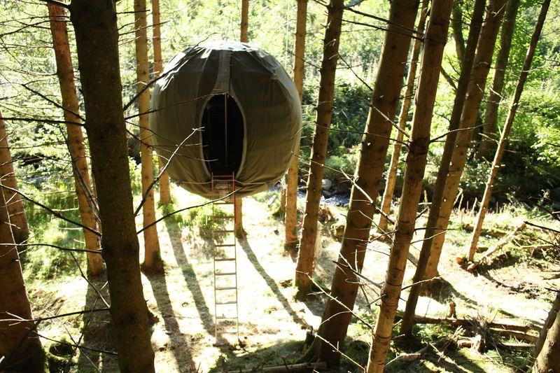 Tree tent in progress
