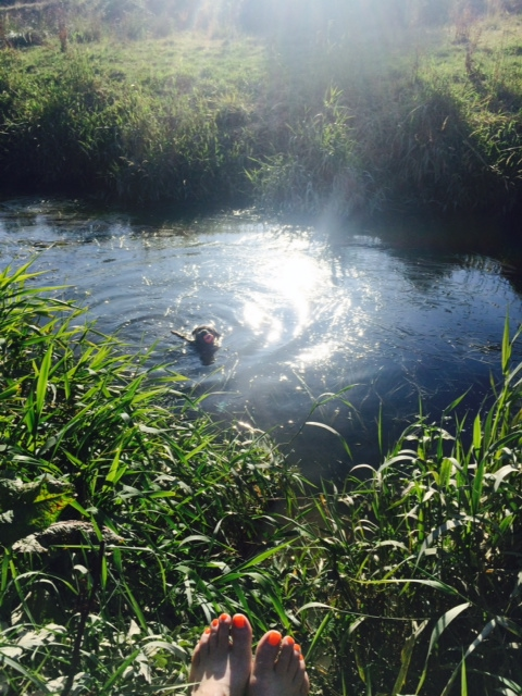 Ted in stream with ball