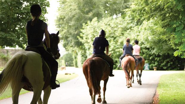 Sig11-stable-mates-lucknam-park-horse-back