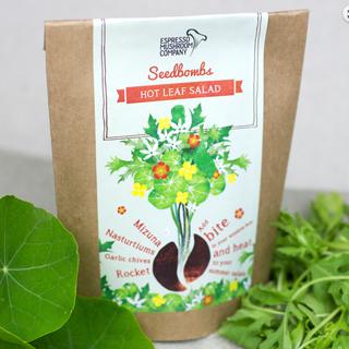 Espresso-Mushroom-Company-Seed-Bomb