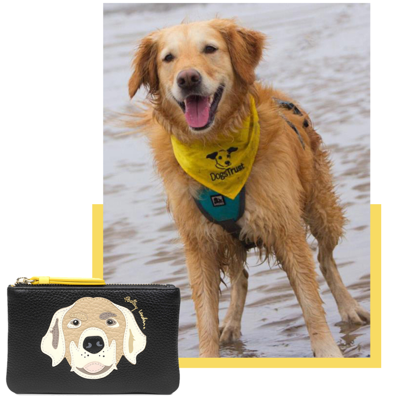 Radley_DogsTrust_Blog_Nov_18_Tile-7