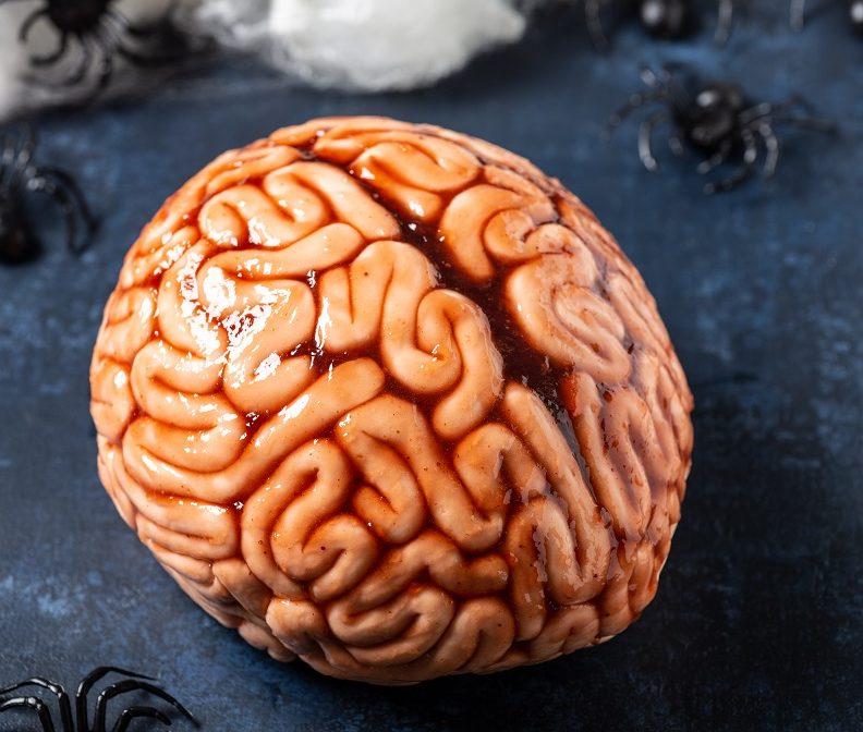 Brain-cake-whole-smaller-e1538917247462